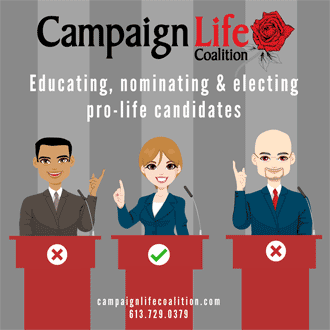 Campaign Life 1