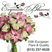 Exquite Blooms